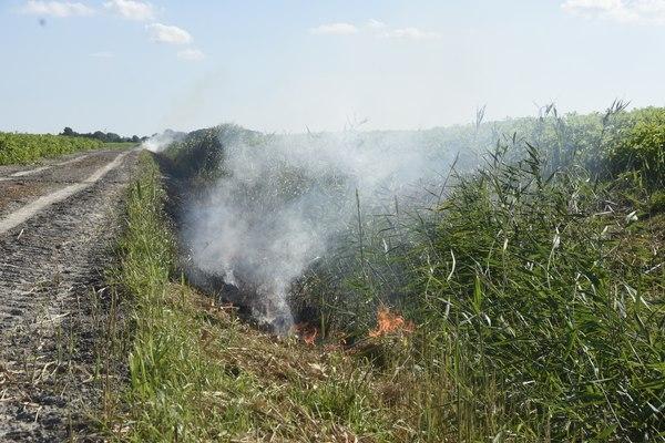 dinsdag 19 juli - Brandweer rukt uit voor bermbrand