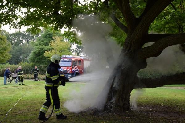 zaterdag 24 september - Kollum: Populaire klimboom in brand gestoken