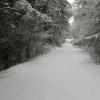 13 februari 2013 Drachten - Zwart / wit of kleur. Deze winter in Appelscha.