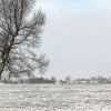 30 januari 2015 W�ltersw�ld - Winter wonderland