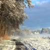 02 februari 2015 Burgum - Nog even een foto van afgelopen vrijdagmorgen bij de vaart met de mist en de zon over de weilanden