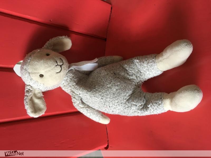 zaterdag 06 oktober - Knuffelschaap gevonden Damwâld