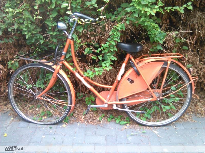 zaterdag 20 juli - oranje weduwe fiets gevonden