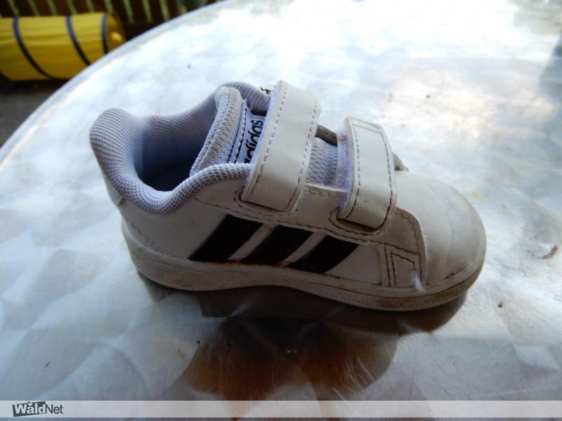maandag 25 mei - Gevonden klein Adidas kinderschoentje