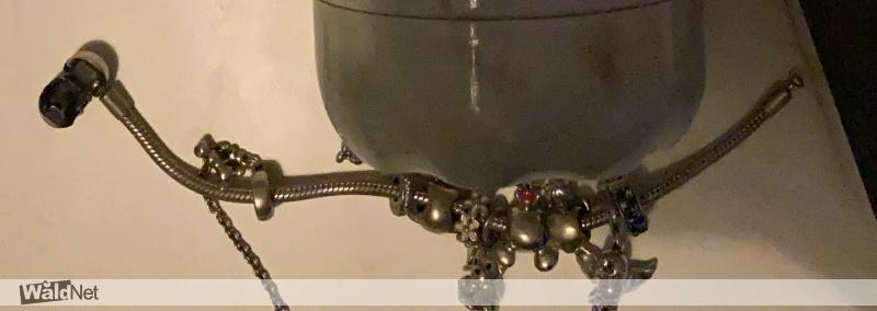 woensdag 19 augustus - Pandora armband verloren