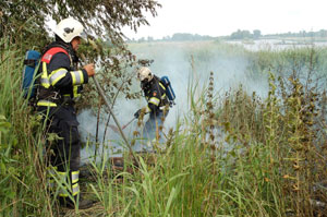 Natuurgebied bij Driezum in brand