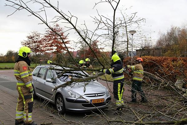 Boom valt op auto in gorredijk for Kruidvat drachten