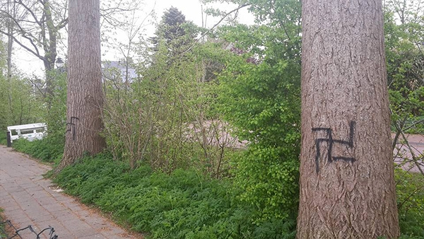 Bomen Beklad Met Hakenkruizen In Rottevalle
