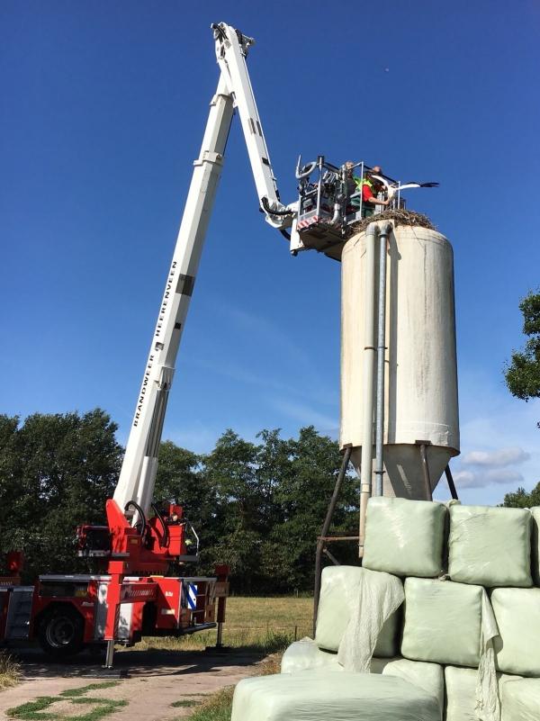 Zwakke ooievaar gered vanaf hoge silo