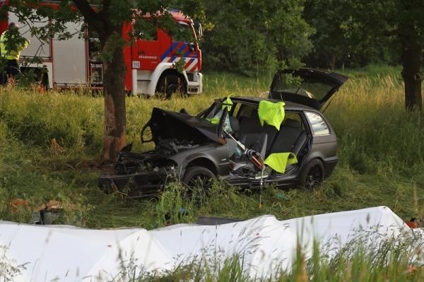 Man (54) reed met opzet tegen een boom: 2 jaar cel