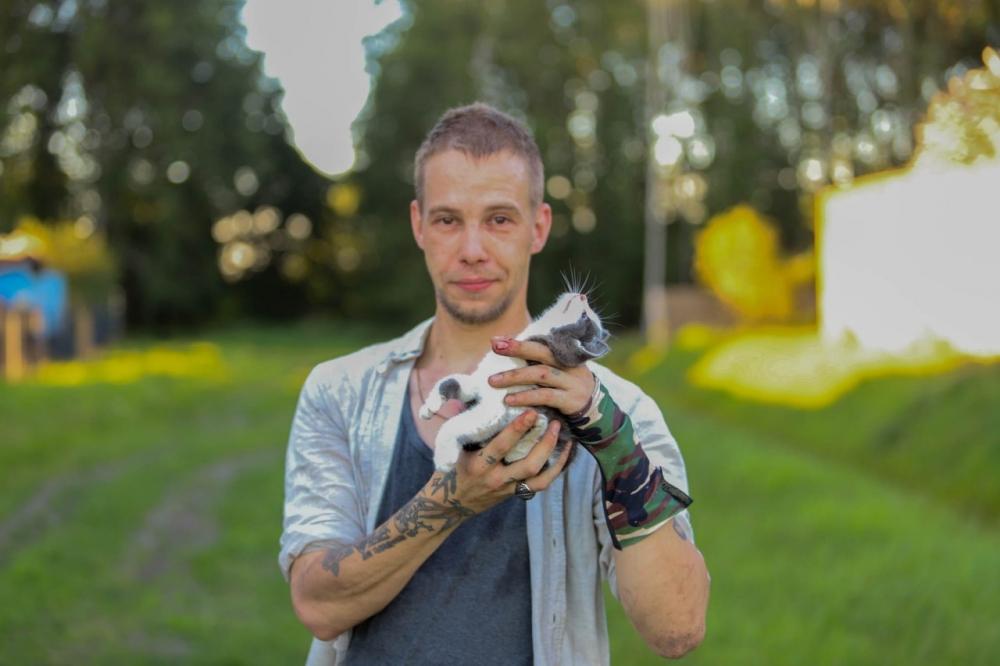 Djurre redt kat uit prikkeldraad